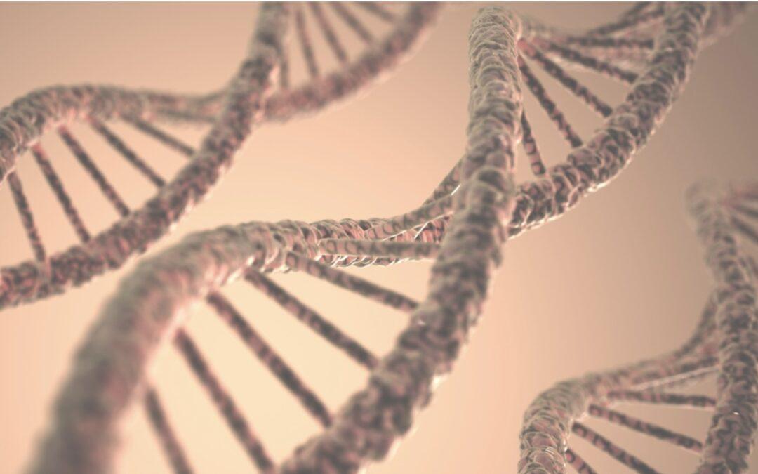 Diagnóstico genético preimplantación